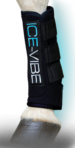 ICE VIBE EQUINE BOOTS